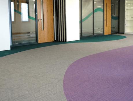 ניקוי שטיחים מקיר לקיר במשרדים
